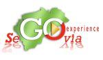 logotipo segexperience1