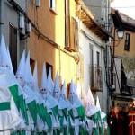 Imagen Rosa- procesion San Lorenzo 2--575x323